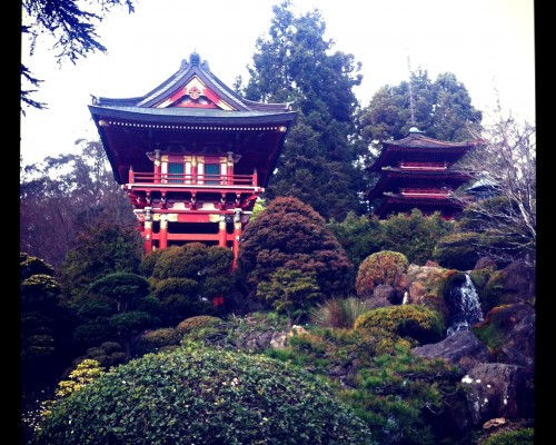 Japanese Tea Garden, San Francisco
