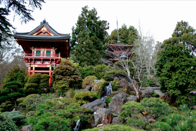 Japanese Tea Garden, Golden GAte Park