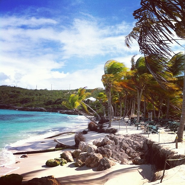 Gwen's, Gwen's Reggae Grill, Anguilla Dining, Shoal Bay