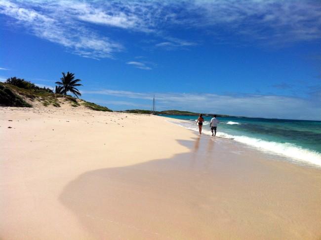 Prickly Pear Anguilla