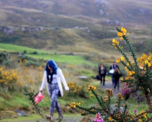 Family Road Trip through Ireland