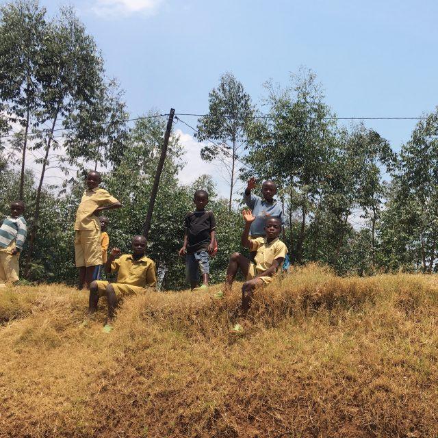 Chimp Trekking in Rwanda - The Wanderlust Effect