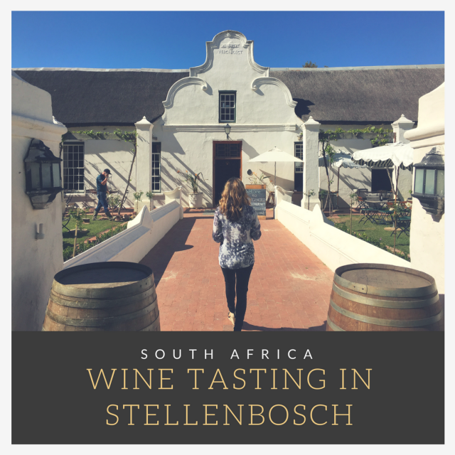 Wine Tasting in Stellenbosch, South Africa