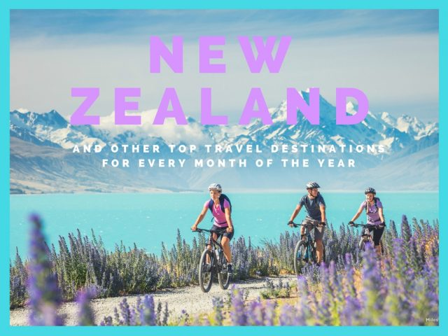 New Zealand and Other Top Travel Destinations for Every Month of the Year
