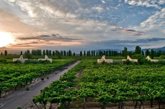 Cavas Wine Lodge, Mendoza, Argentina