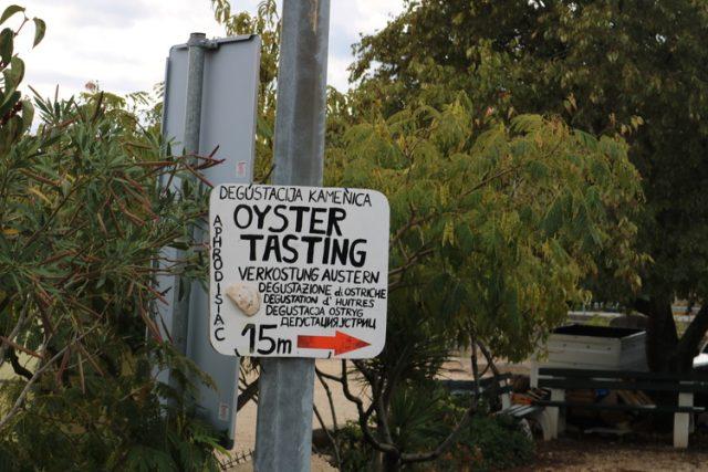 Oyster Tasting Mali Ston