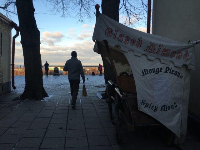 One Day in Tallinn