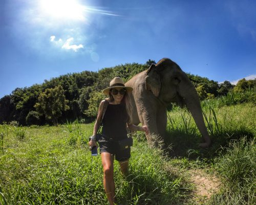 Anantara Golden Triangle Walking with Giants