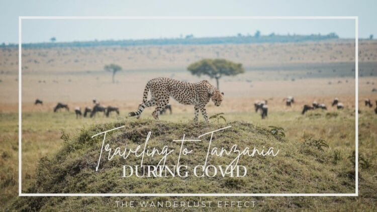 Travel to Tanzania During COVID
