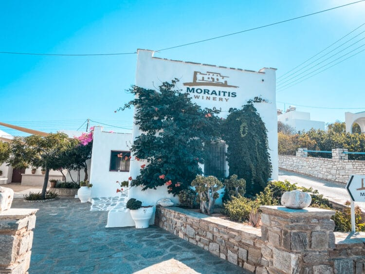 Moraitis, Wine Tasting in the Cyclades