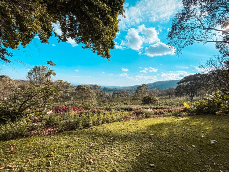 HOTEL INSIDER: A Stay at Gibb's Farm, Karatu, Tanzania